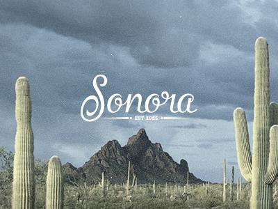Sonora dribbble