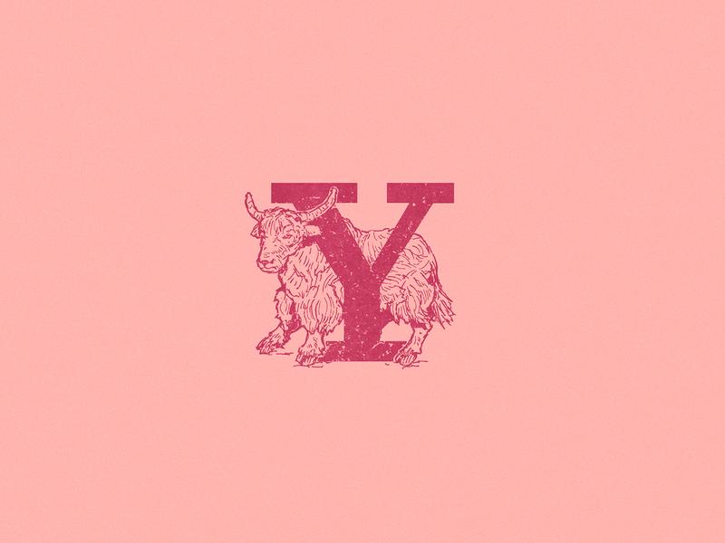 Y: Yak