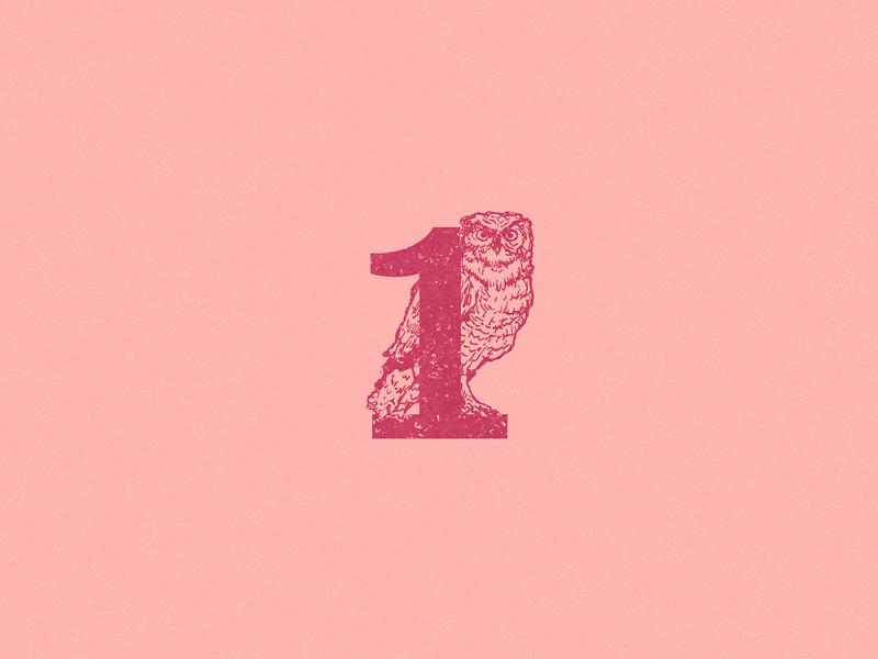 1: Owl