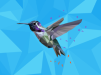 Bird Polyart 2nd