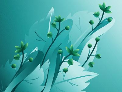 Linden gradient plant illustration flower linden