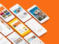 Application Design of Pet