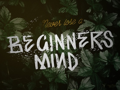 Never Lose a Beginners Mind