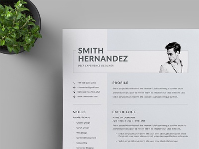 Resume/CV us letter docx corporate identity corporate clean business letterhead business branding a4 modern resume cv template word template stationery simple professional resume letterhead vector professional word resume
