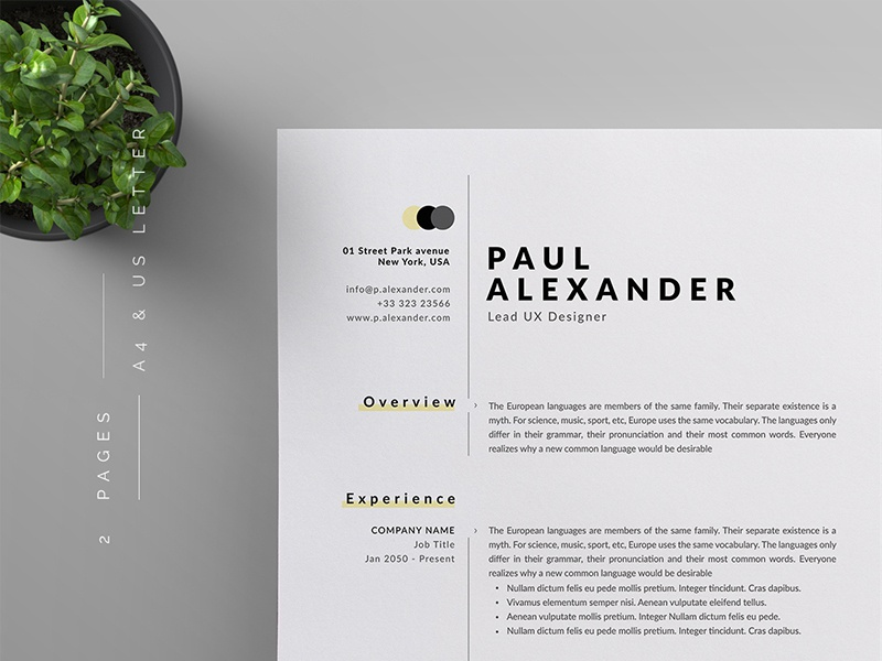 Resume Cv By Reuix Studio Dribbble Dribbble