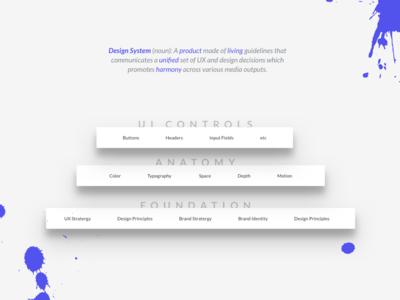 Design System Dribbble ux ui anatomy system design