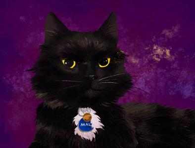 House Panther photoshop painting wild texture black cat purple digital art digital illustration photoshop illustration animal art animals house panther pet portrait portrait cat