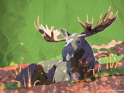 Moose wildlife art forest illustrator photoshop digital collage natural science wildlife moose animals sciart illustration vector