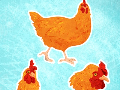 Chickens! adobe illustrator collage bird animals illustration vector chicken
