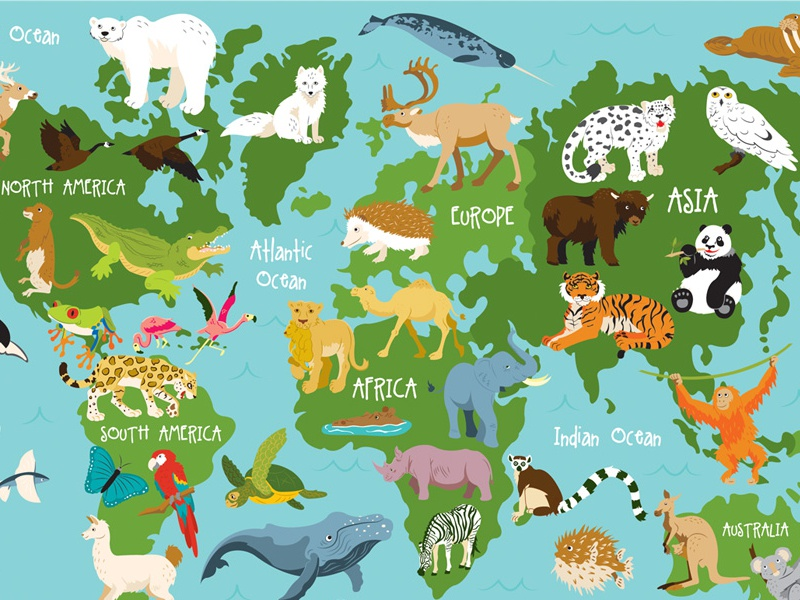 Animal World Map By Sara Lynn Cramb Dribbble Dribbble