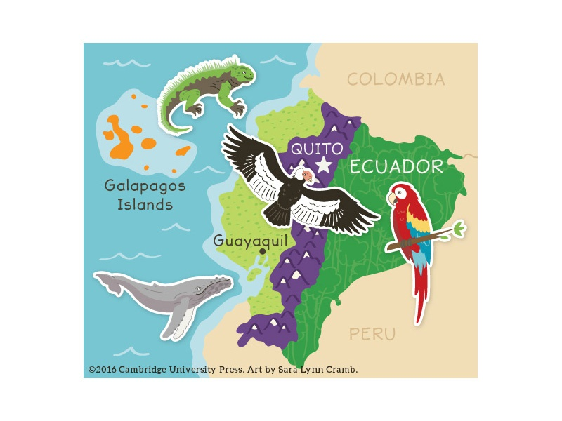 Ecuador Map  wildlife digital illustration vector south america parrot whale animals islands galapagos rainforest map ecuador