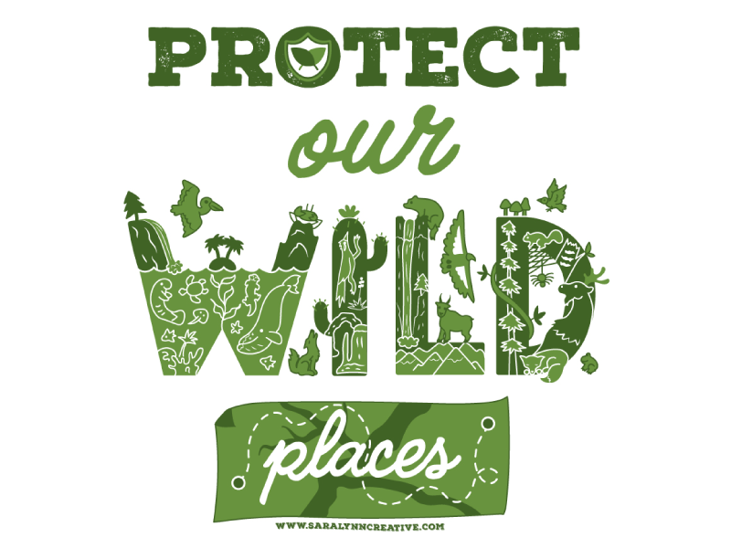 Protect Our Wild Places digital illustration vector illustration vector art wildlife preservation conservation natural resources resist national parks protect our wild places illustration nps