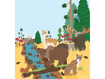 Animals of the World illustrations-Coniferous Forest Animals