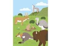 Animals of the World illustrations-Grassland Animals