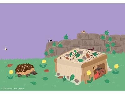 Night Explorer book illustrations-Feeding Hedgehogs