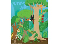 Rainforest Illustration