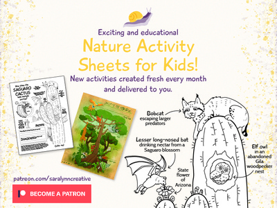 Nature Activities for Kids!