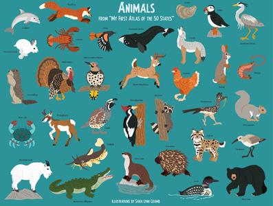 Animal spot art