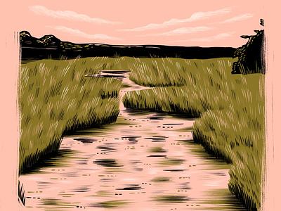 Delaware explore camp run hike delaware marsh swamp nature landscape illustration