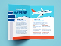 Traveling With Aerophobia Pamphlet