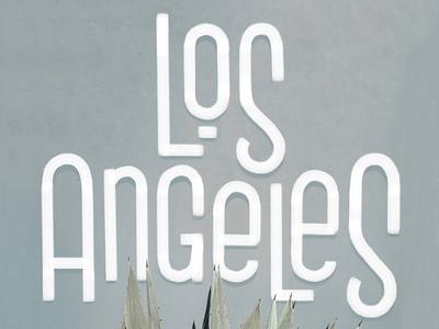 Los Angeles procreate apple pencil letters typography type lettering los angeles la