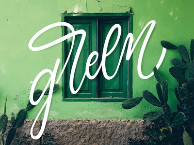 Green procreate typography green type lettering