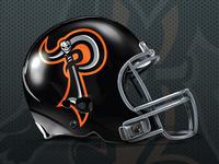 Puntaneers Helmet