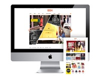 BSX website