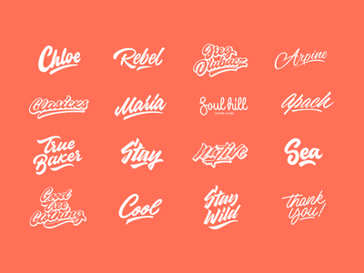 Lettering Collection hand lettering calligraphy lettering script sketches logo type typography font free logotype debut