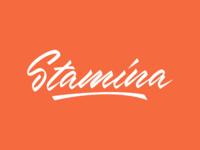 Stamina - Logo for Dance Festival