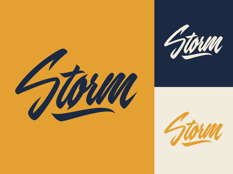 Storm - Logo for Porsche-tuning company fashion packaging mark clothing streetwear design typo identity branding sketches free type script font typography logotype logo lettering hand lettering calligraphy