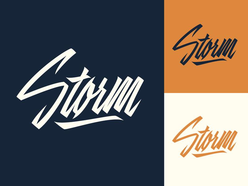 Storm - Logo for Porsche-tuning company by Yevdokimov Kirill on Dribbble