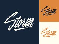 Storm - Logo for Porsche-tuning company