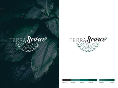 LOGO TERRA SOURCE branding and identity branding concept branding design logotype typography vector illustration branding logo design