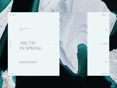 Ecology Safaris - Design Concept grid composition typogaphy aftereffects figma uiux ecology safari snow ice animation design art ui antarctica
