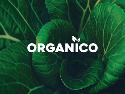 Organico 1/3 - Brand mark mobile identity website minimal lettering type flat web graphics app icon ux ui branding typography logo digital vector design illustration