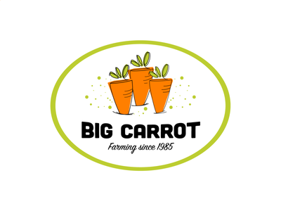 BigCarrot logo logo wordmark brand illustration graphic design branding graphic design brand logo creation logo designer