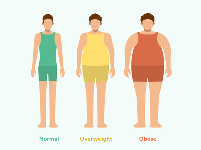 Body types illustration for Sweetch Health sweetch health sweetch healthy vector art normal flatdesign flat obese overweight mobile app mobile illustration body
