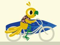 Surf and...bike?