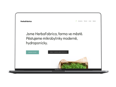 HerbaFabrica Corporate Identity Website stickers a5 herbal print simple clean interface white emoji green logo mint green simple typography herbs corporateidentity website herbafabrica
