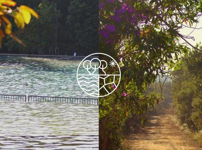 Água Mineral brand design brand identity brand visual identity design branding logo