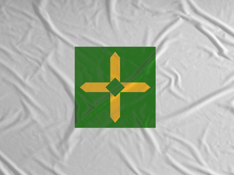 Flag brand design logotype logo design graphic design brand visual identity logo design branding brand proposal brasília brand identity brasília 60 anos