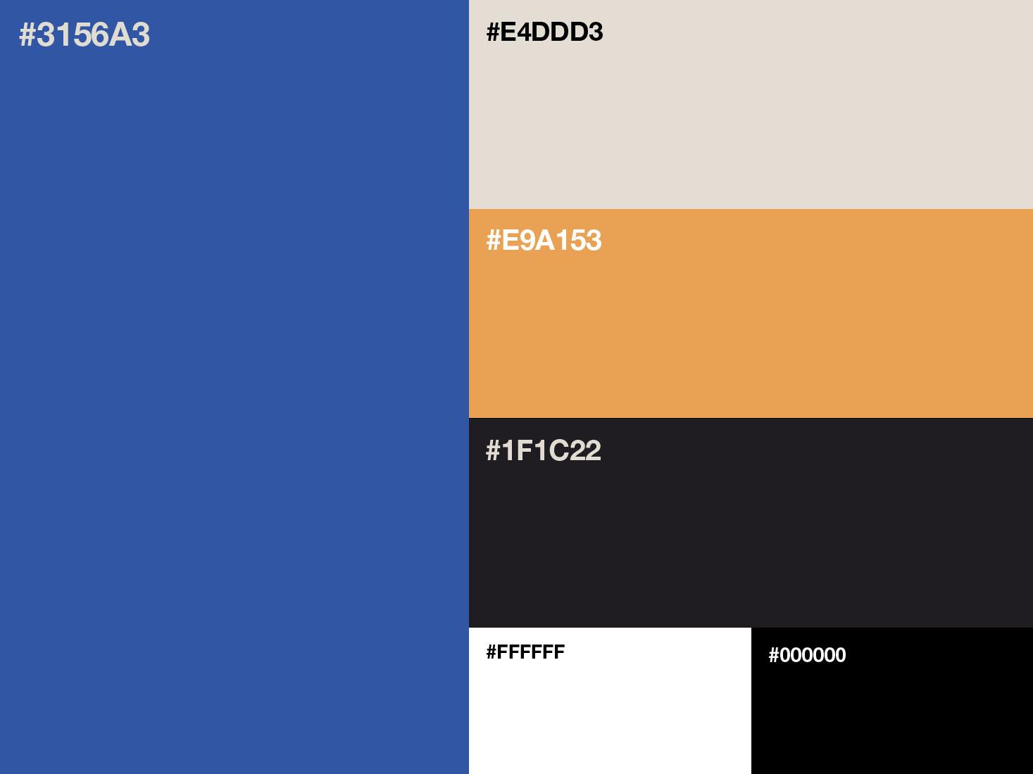 Personal Branding color brand logotype brand design brand identity visual identity logo design branding personal branding color palette