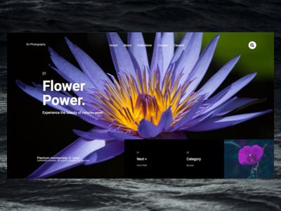 Flower Power ux design ux elementor wordpress freelance designer personal website design website
