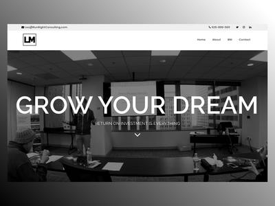 LeoManzione.com wp wordpress blank  white website web design uc design ux