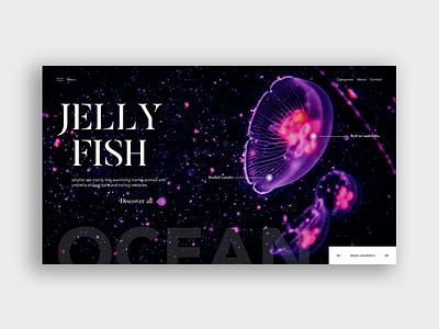 Jellyfish illustration design art uidesigners uidesigns interface design webdeisgn