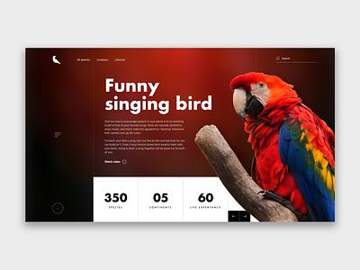 Singing bird landing page design art ui illustration interface design design webdeisgn