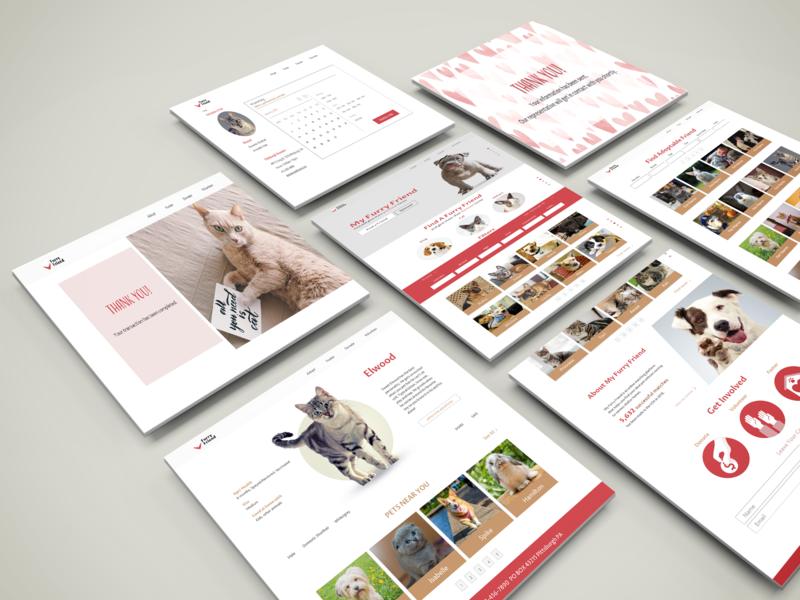 Adoptable pet matching website isometric web design pet adoption adobexd branding ux design ui