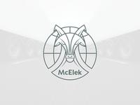 McElek - final version