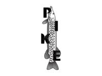 Pike - Illustration